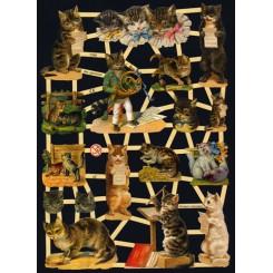 Glansbilleder katte / 3-7288