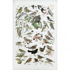 Økologisk viskestykke – Havens fugle