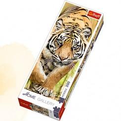 Tiger, 300 brikker
