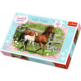 Heste, 160 brikker