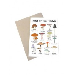 Mouse & Pen kort A6 - World of Mushrooms