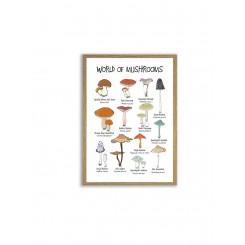 Mouse & Pen illustration A4 - World of Mushrooms