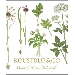 Minikort kvadratisk – Spiselige vilde planter
