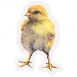 Koustrup magnet kylling