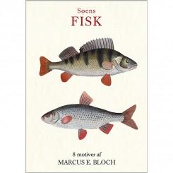 Søens fisk - 8 forskellige dobbeltkort