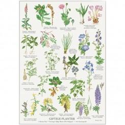 Koustrup miniplakat A4 - Giftige planter