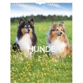 Vægkalender Hunde 2020