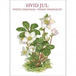 HVID JUL - 8 forskellige dobbeltkort
