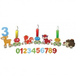 Fødselsdagstog med dyrevenner