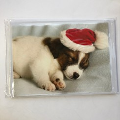 4 dobbeltkort m. kuvert - Julemotiv - Hund/kat