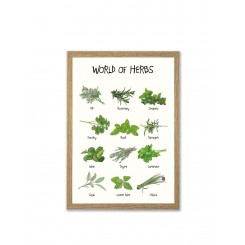 Mouse & Pen illustration A4 - World of Herbs