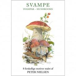 SVAMPE - 8 forskellige dobbeltkort