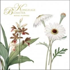 KONGELIGE BLOMSTER - 8 forskellige dobbeltkort