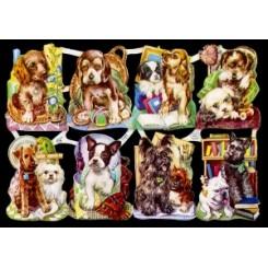 Glansbilleder hunde / 3-7121