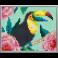 Pixel XL 4 basisplader, Tucan