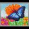Pixel XL 4 basisplader, Sommerfugl