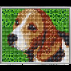 Pixel XL 4 basisplader, Beagle