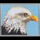 Pixel XL 4 basisplader, Ørn