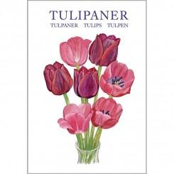 TULIPANER - 8 forskellige dobbeltkort