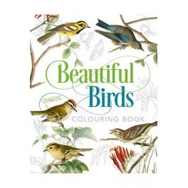 Malebog, Beautiful Birds