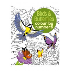 Malebog, Birds & Butterflies Colour by Numbers