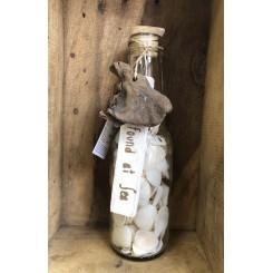 Flaske med skaller og skilt, lys muslingeskal uden riller