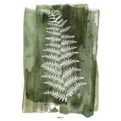 Malerifabrikken plakat 30 x 40 cm, White Fern