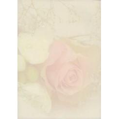 Rössler papir, rose, A4, 25ark