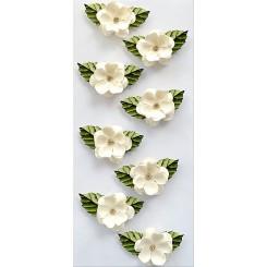 Rössler klistermærker, Hvide blomster med blade