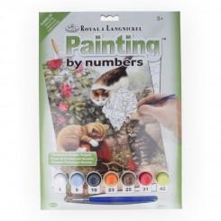 Royal & Langnickel Painting by numbers, Katte