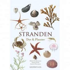Stranden - Dyr & Planter