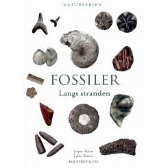 FOSSILER - Langs stranden